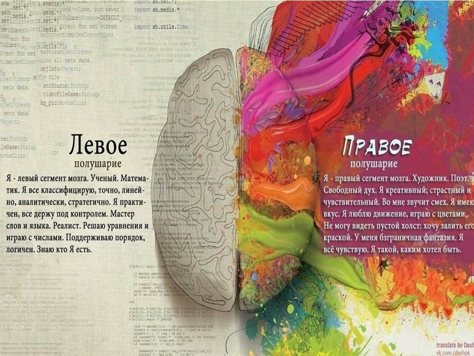 Картинки на проверку полушария мозга